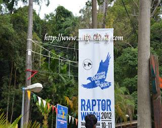 Raptor Watch