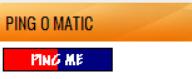 tampilan widget ping o matic