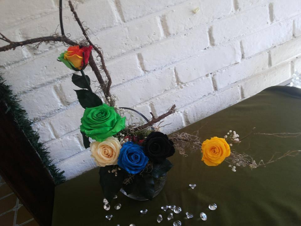 Rosas Circo Payaso Turquesa Amarillo Crema Verde Naturales Preservadas ¡Duran 4 Años! Santa Ana, El Salvador