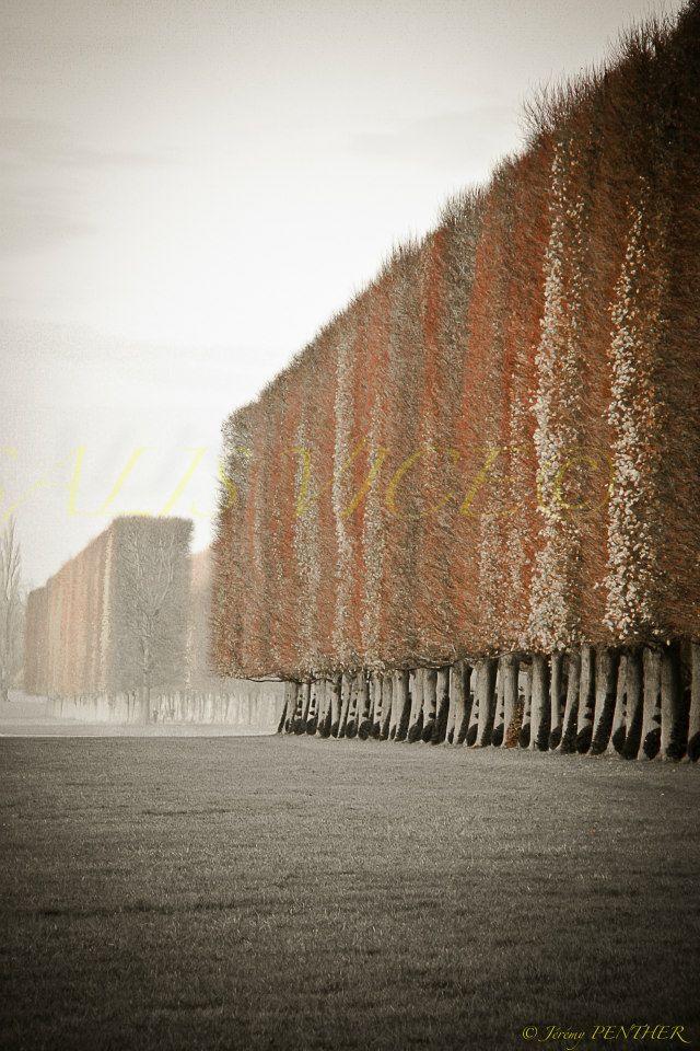Au bord du Canal Versalis Vice Versailles
