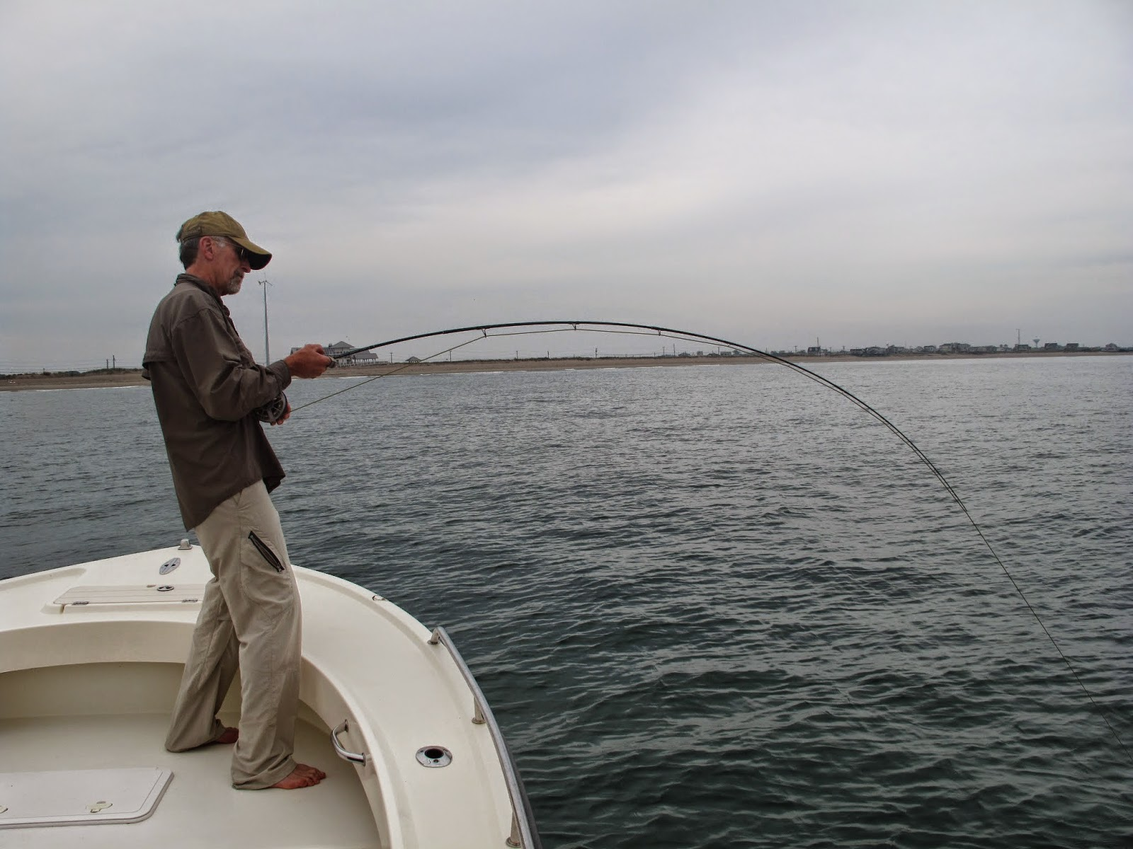 Boston fly fishing and report false albacore and bonito for Long island sound fishing report
