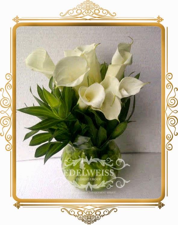 bunga calla lily cantik dan elegant
