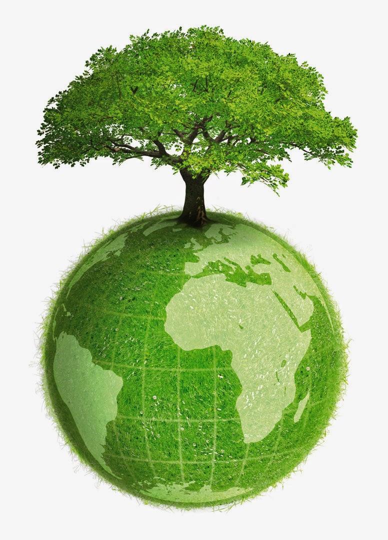 empleo medio ambiente: