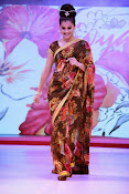taapsee glam pics in saree-thumbnail-20
