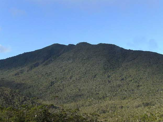 Mount Hamiguitan Philippines