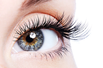 Beauty tip strong eyelashes Mare Nostrum SPA
