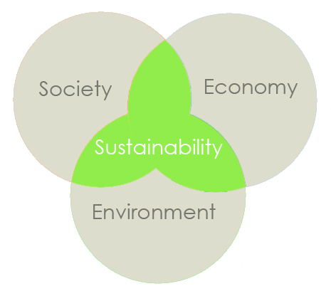 "sustainability and environmental standards seeking competitive The regeneration of dell: new rules in leadership for business and the environment 2008 dell recently declared its intention to be the ""greenest technology company on the planet."