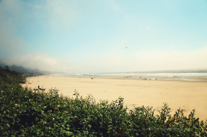 ocean, beach photograph
