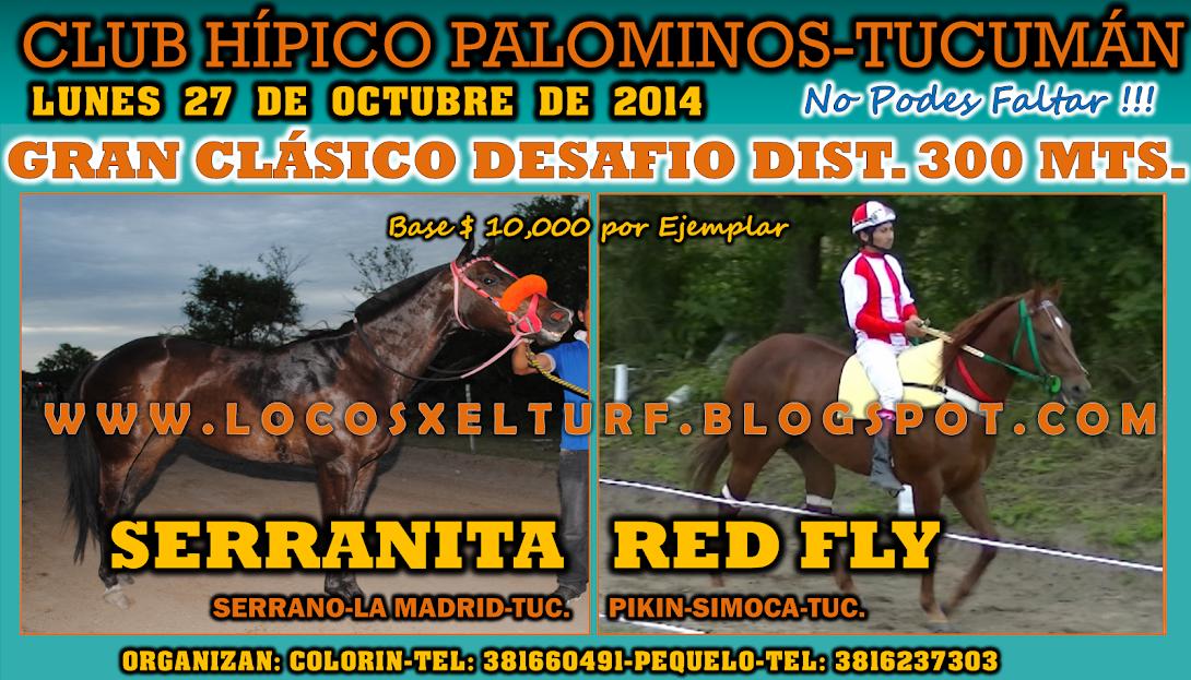 27-10-14-CLAS-HIP. PALOMINOS
