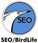 Seo.org