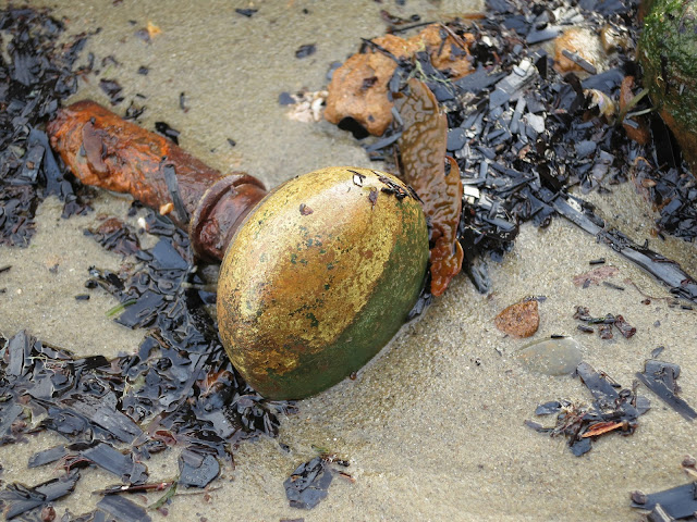 Metal and enamel door-handle - rusted and mottled - on wet sand