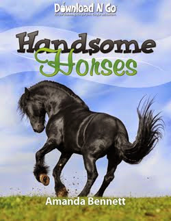 Handsome Horses 1-Week Download N Go