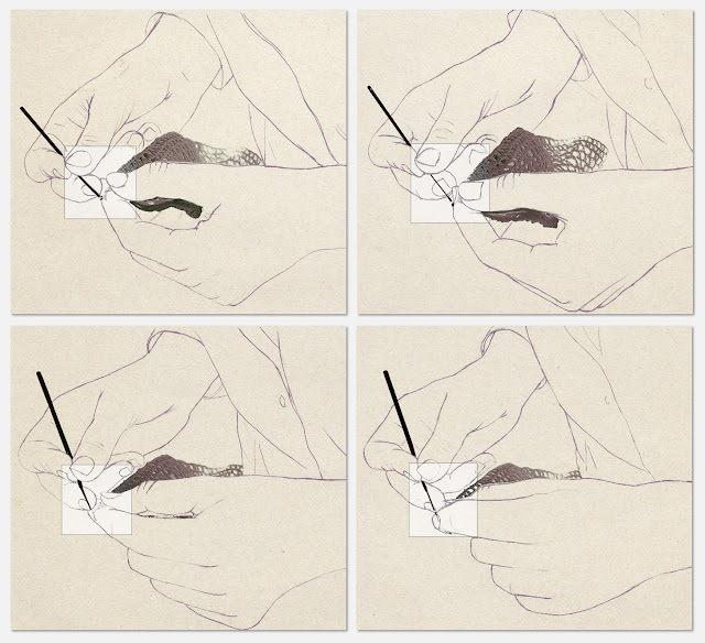 ganchillo, secuencia, manos, dibujo