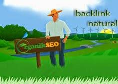 Backlink Profile In Natural