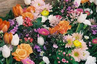 toko bunga di jakarta, jual bunga, rangakain bunga segar, bunga mawar, rangkaian bunga murah