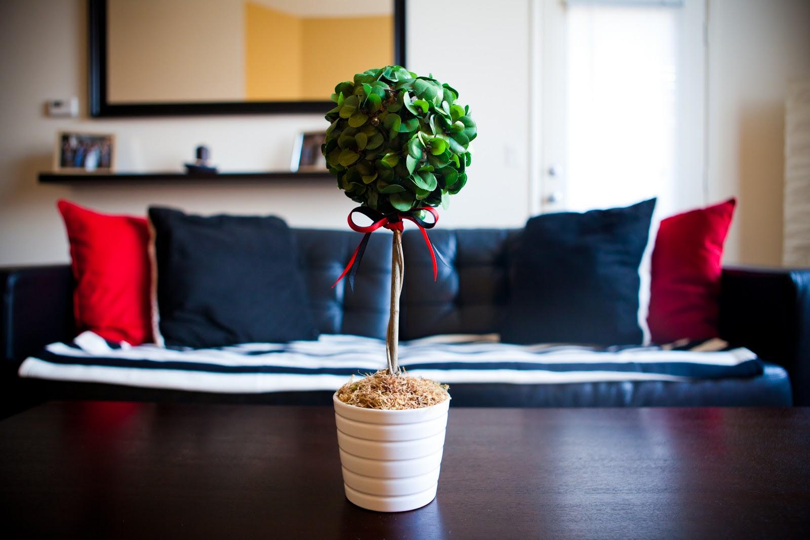diy tall boxwood topiary inspired by design darling ballard materials needed