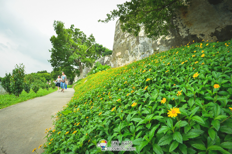 Beautiful patch of flower along the Fortress Armourial