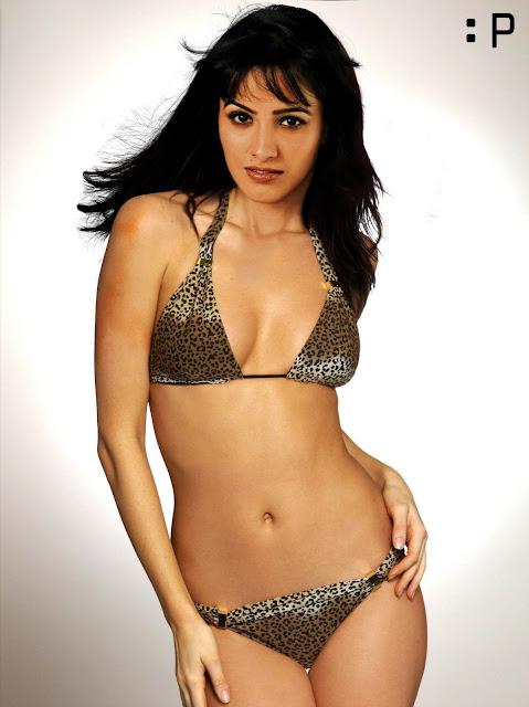 Anita Hassanandani in Bikini