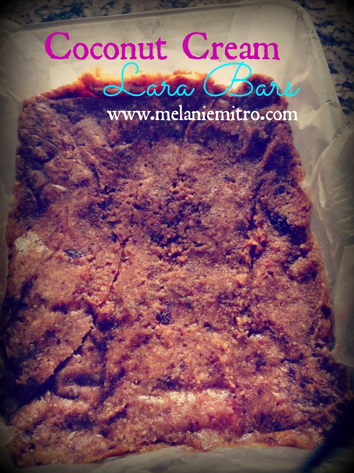 Homemade protein bar recipes, clean eating protein bars, lara bars, Melanie Mitro