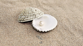 Sand Shells Pearl HD Love Wallpaper