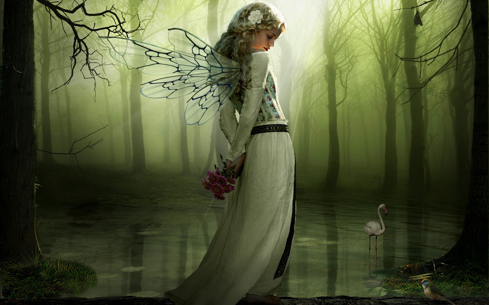 http://3.bp.blogspot.com/-n2EvPl0jyZE/UIvC2j1UNgI/AAAAAAAAE7k/3tL3qRHfkXM/s1600/Green+Angel+1900x1200+Photoshop+wallpaper.jpg