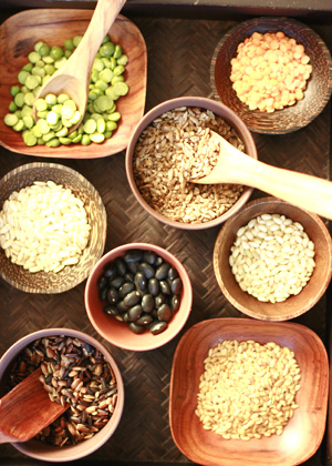 Whole Grain Kernel Foods For Kids