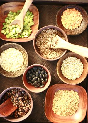 Whole Grain Kernel Foods For Kids