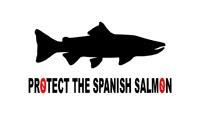 PROTECT THE SPANISH SALMON