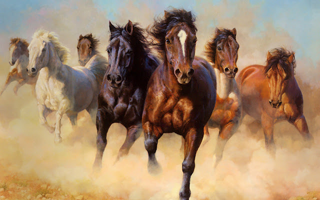 horses+wallpapers+%25289%2529