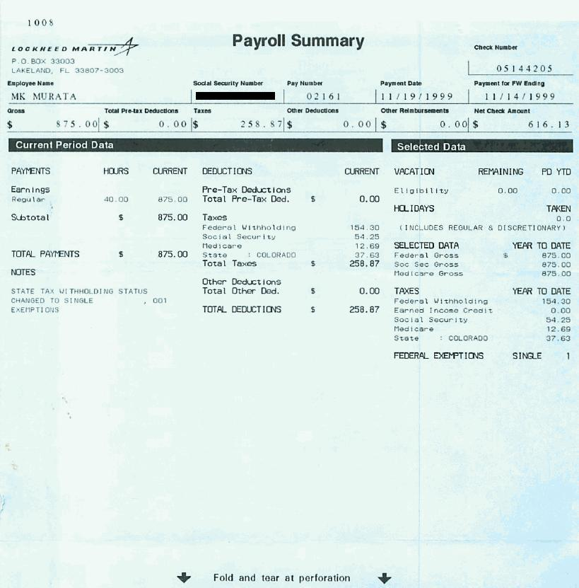 need fake pay stubs characters custom pay stub template blank pay stub