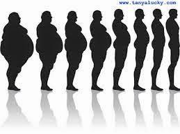 perut kecil,perut lansing,perut buncit,mengecilkan perut