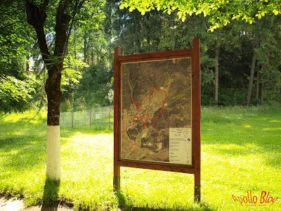 Harta Borsec