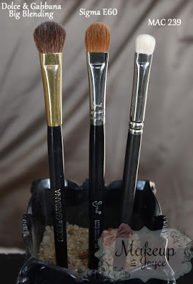 Dolce and Gabbana Big Blending Brush Review