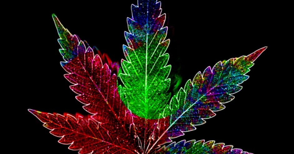 3d wallpaper cool weed leaf marijuana hd wallpapers