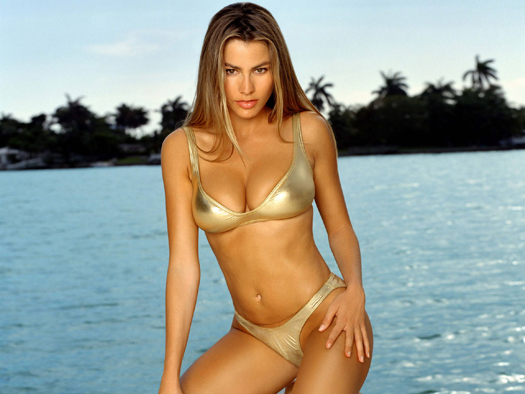 http://3.bp.blogspot.com/-n3DeRXpPcoo/T56uPLVARZI/AAAAAAAAD6k/zTknxwSvyK8/s1600/Sexy+Hot+Sofia+Vergara+semi+nude+semi+naked+swimsuit++bikini+(3).jpg