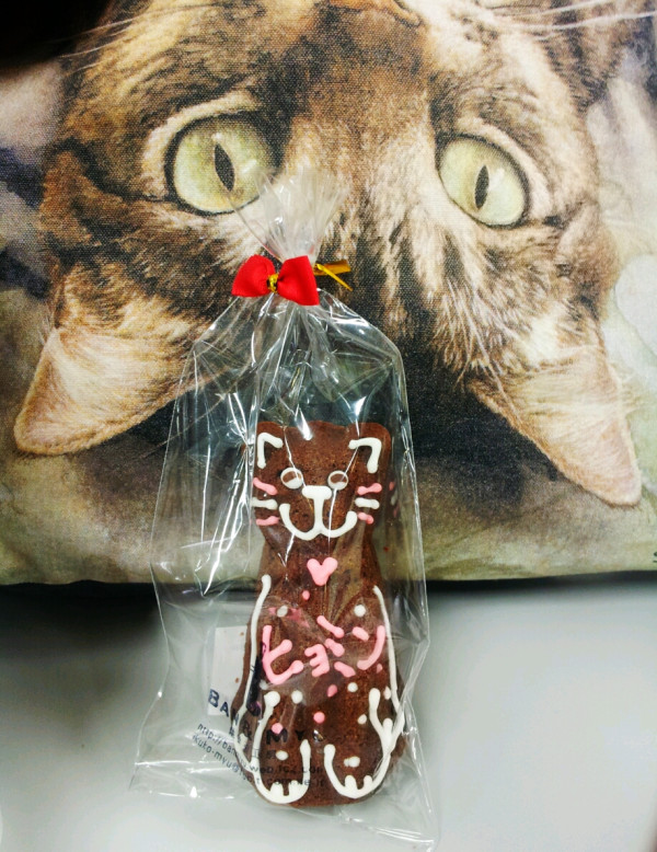 Photo T Ara Dapatkan Kue Bentuk Kucing Bertulis Nama Mereka