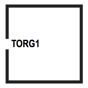 TORG1
