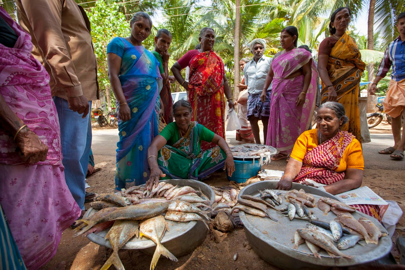 Sustainable livelihoods ten years after the tsunami a for Village fish market