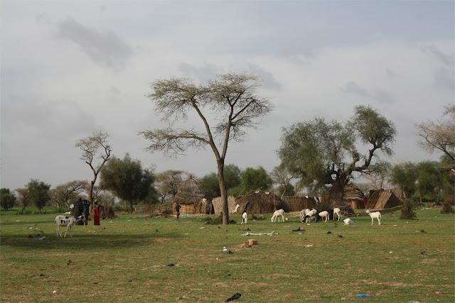 Poblado camino de Kaolack