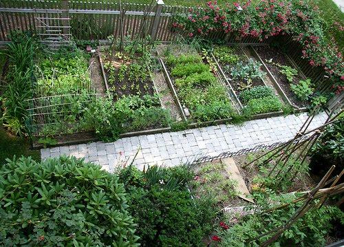 Garden Design Vegetable Garden Design