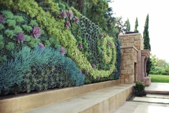 High Cotton Style A Succulent Garden DIY or not
