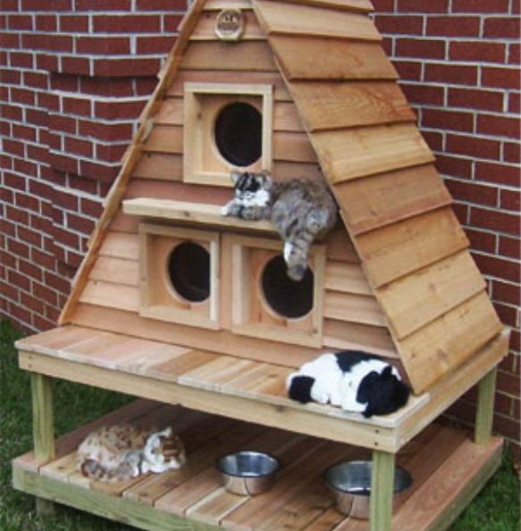 Cat House Design Ideas