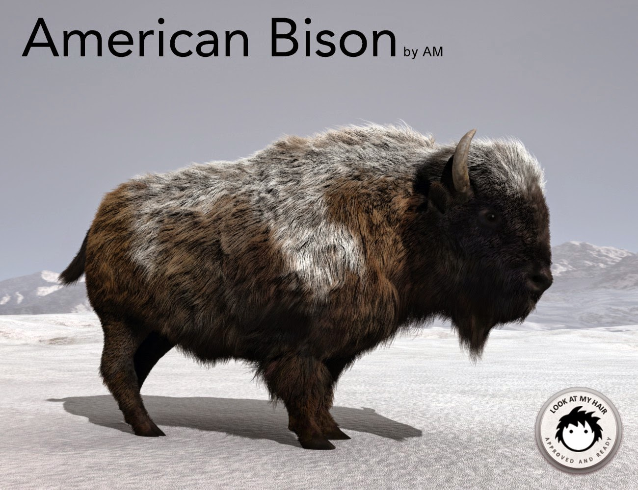 Bison nord-américain