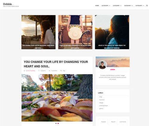 Dribble Blog Theme