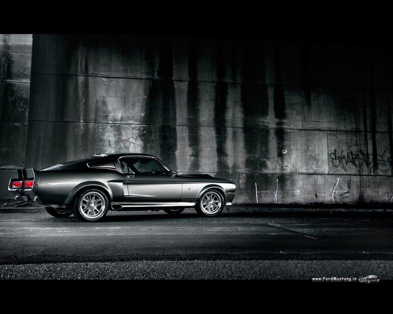 http://3.bp.blogspot.com/-n4o9T4oFWdA/TliJw6NCDBI/AAAAAAAAAHs/omKqE-f_gdY/s1600/Ford-Mustang-Shelby-GT500-1280x1024-01.jpg