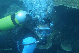 diving karimunjawa paket