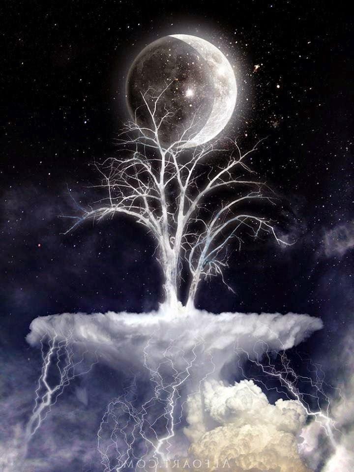 Estamos En Luna Creciente Lun Ticos2 0