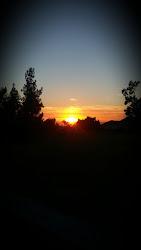 Simmer Dawn
