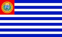 Bandera de la ciudad de Santa Ana