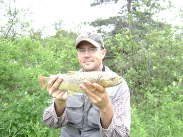 2010 Brown Trout
